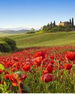 СПА почивка в Тоскана, Италия с полет от София