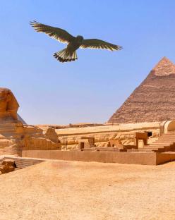 Почивка в Египет - Хургада и Кайро с полет от Варна- хотел Pharaoh Azur Resort 5*