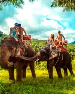 Нова година 2021 в Шри Ланка с включена гала вечеря - плаж и туристическа обиколка